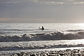 Back Lit Surfer Sitting On Surfboard In Kachemak Bay, Homer, Southcentral Alaska, USA