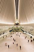 The Oculus Transit Hub; New York City, New York, United States Of America