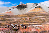 The colorful landscape of the Valley of Ten Thousand Smokes and Baked Mountain in Katmai National Park; Alaska, United States of America