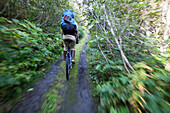 A Woman Mountain Bikes Down A Trail In A Forest With A Backpack; Alaska, United States Of America