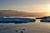 A Glacial Lagoon At Sunset With Silhouetted Ducks Swimming In The Water In The Foreground; Iceland