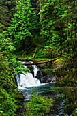 Twin Falls, One Of The Smaller Waterfalls At Silver Falls State Park; Silverton, Oregon, United States Of America