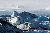 Massive Icebergs Choke Up The Waters Of The Glacial Lagoon Along Iceland's South Coast; Jokulsarlon, Iceland