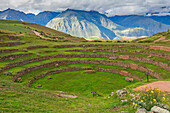 Moray Ruins In The Sacred Valley, Archaeological Site; Cuzco, Peru