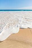 The ocean whitewash sea foam rising high onto the sand at the beach on the North Shore of Oahu; Honolulu, Oahu, Hawaii, United States of America