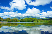 Mirror image of forest and mountains in the tranquil water of the Wailua reservoir; Wailua, Kauai, Hawaii, United States of America