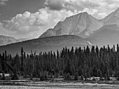 Black and white landscape of the rugged Canadian rocky mountains with a forest and a river in the foreground; Invermere, British Columbia, Canada