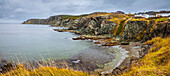 Rugged Atlantic coastline with golden fields and a cloudy sky; Newfoundland, Canada