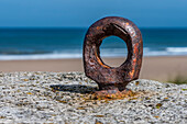 Rusty ring on a rock along the coast with a beach in the background; South Shields, Tyne and Wear, England