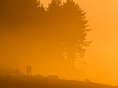 Sunset lights up the fog  with a golden glow on the Oregon Coast; Seaside, Oregon, United States of America