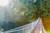 Sunshine lights the way along a suspension bridge across the end of Buntzen Lake trail to continue the path into the forest trails near Vancouver; British Columbia, Canada