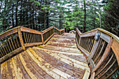 Wooden steps at the Gardens of Hope respite cottage; New Glasgow, Prince Edward Island, Canada