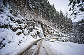Tire tracks in a snow covered road beside a forest on a mountainside, Hauptstrasse Road; Switzerland