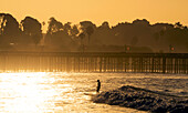 Woman surfer on a wave, Ventura, C Street surf, California, USA
