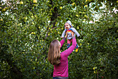 Mother holding laughing baby aloft in apple orchard, Parkdale, Oregon, USA
