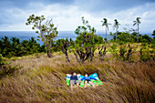 Couple lying on blanket in meadow near ocean coastline, Nusa Penida, Bali, Indonesia