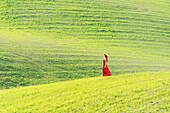 San Quirico d'Orcia, Orcia valley, Siena, Tuscany, Italy, A young woman in red dress is walking in a wheat field