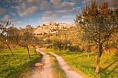 Europe,Italy,Umbria,Perugia district, Trevi at sunset