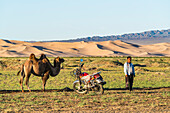 Camel and nomadic man with his motorbike, Sevrei district, South Gobi province, Mongolia