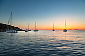 Sailing boats at sunrise, on background Capraia Island (Macinaggio, Rogliano, Bastia, Haute-Corse department, Corsica, France, Europe)