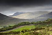 Ireland, Letterfrack, Connemara National Park, Co, Galway, Ireland, Foggy day
