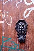 Door decoration in Bologna, Emilia-Romagna, Italy, Europe