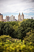 view from the rooftop of the Metropolitan Museum of Art over the surrounding Central Park, 5th Ave, Manhattan, NYC, New York City, United States of America, USA, North America