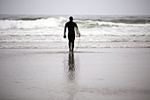 A lone surfer wearing a wet suit prepares to enter Pacific Ocean on Indian Beach along the Oregon Coast.