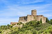 The landmark Fort Saint Elme, Collioure, Côte Vermeille, Céret, Pyrénées-Orientales, Occitanie, France.