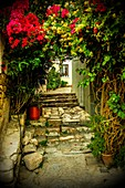 Plaka district in Athens, Greece, Europe.