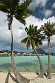 Pearl Beach Resort, Bora-Bora, French Polynesia.