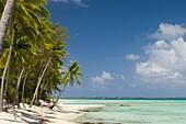 Tikehau, Tuamotu Archipelago, French Polynesia.