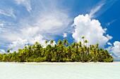 A motu island at the Blue Lagoon near Rangiroa.