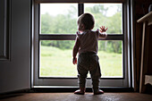 Rear View of Infant Child Standing at Screen Door