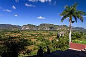 Viñales Valley, Cuba, Province Pinar del Rio
