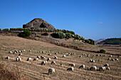 Ancient megalithic Serra Orrios Nuragic Village in Sardinia, Italy