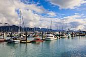 Small Boat Harbour, small boats and mountains, Seward, Resurrection Bay, Kenai Peninsula, Alaska, United States of America, North America