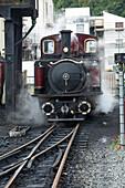 Narrow gauge Blaenau Ffestiniog railway station engine taking water and coal, Porthmadog, Llyn Peninsular, Gwynedd, Wales, United Kingdom, Europe