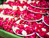 Flowers for offering at a Hindu temple, New Delhi, India, Asia