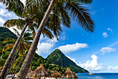 Gros Piton, with palm trees and thatched sun umbrellas, Sugar Beach, St. Lucia, Windward Islands, West Indies Caribbean, Central America
