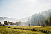 landscape in autumn, Freiburg im Breisgau, Black Forest, Baden-Württemberg, Germany