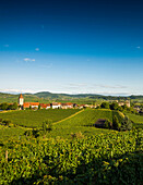 Wine village and cultural landscape in autumn, Burkheim, Vogtsburg im Kaiserstuhl, Baden-Württemberg, Germany