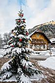 Ravennaschlucht. winter, Höllental near Freiburg im Breisgau, Black Forest, Baden-Württemberg, Germany