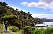 Track near Port William, Stewart Island, South Island, New Zealand