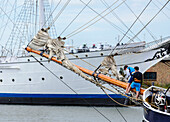 Young men climb on an old wooden sailing ship. Museum ship Gorch Fock 1 can be seen in the background, Stralsund, Ostseeküste, Mecklenburg-Western Pomerania Germany