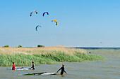 Kitesurfing in Born, Darss , Ostseeküste, Mecklenburg-Western Pomerania, Germany