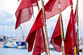 Banners of set nets from fishing boat in the marina, Kühlungsborn, Ostseeküste, Mecklenburg-Western Pomerania Germany