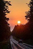 Sunrise on a road near Mellenthin, Usedom, Ostseeküste, Mecklenburg-Western Pomerania, Germany