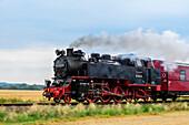 Steam railway runs between Kühlungsborn and Bad Doberan, called Molli, Ostseeküste, Mecklenburg-Western Pomerania, Germany