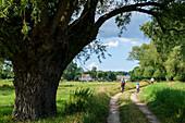 Mother with child biking on a dirt road, Lieper angle, Usedom, Ostseeküste, Mecklenburg-Vorpommern, Germany
